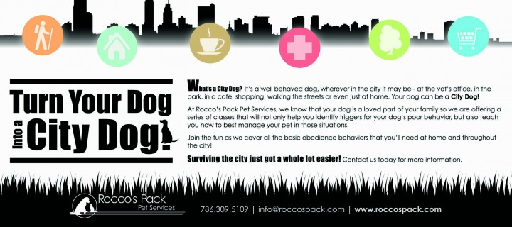 Puppy Classes at Rocco's Pack Pet Services
