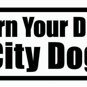 City Dog! Group Classes