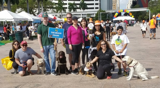 2017 Walk for the Animals Benefiting the Humane Society of Greater Miami