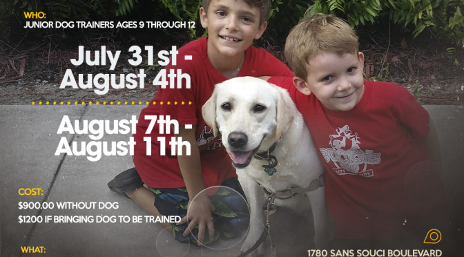 Dog Training Summer Camp Program for Kids